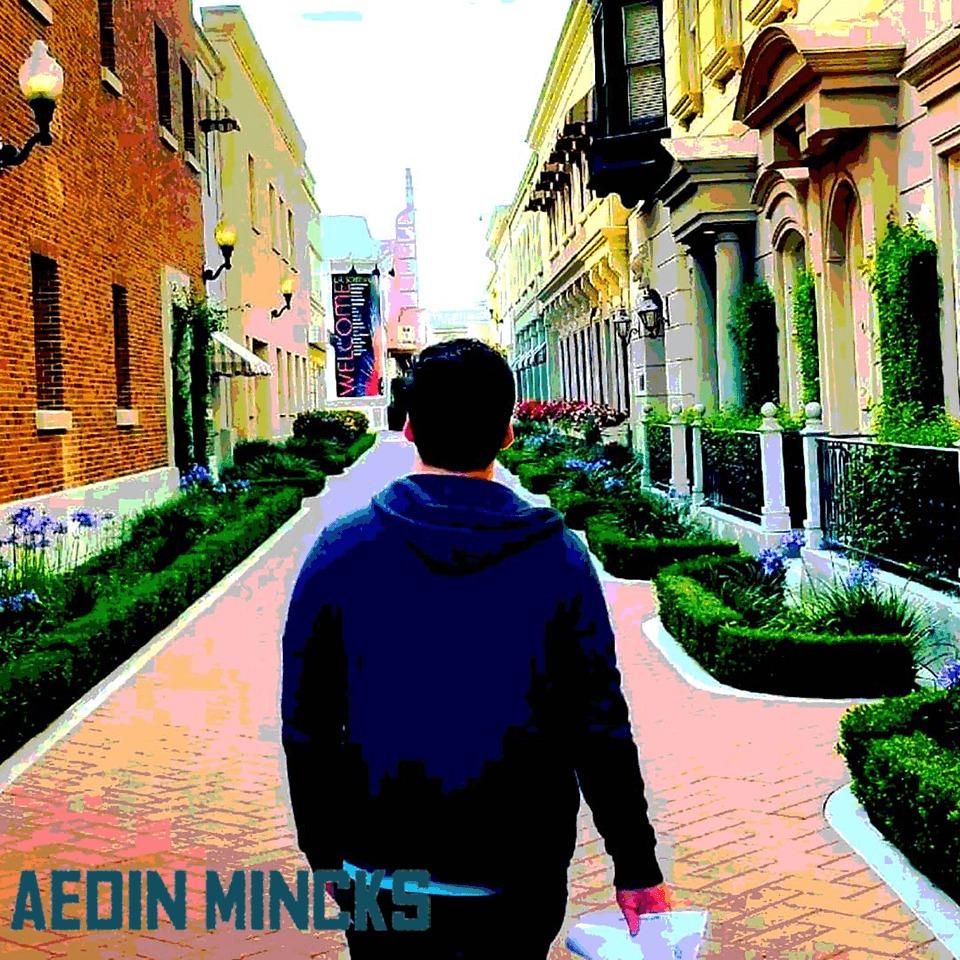 aedin-mincks website